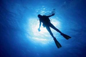diving in phuket