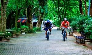 phuket town sightseeing 8