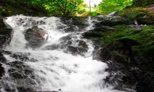 ton sai Phuket Waterfalls - 2