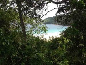 nai harn beach viewpoint nai harn beach